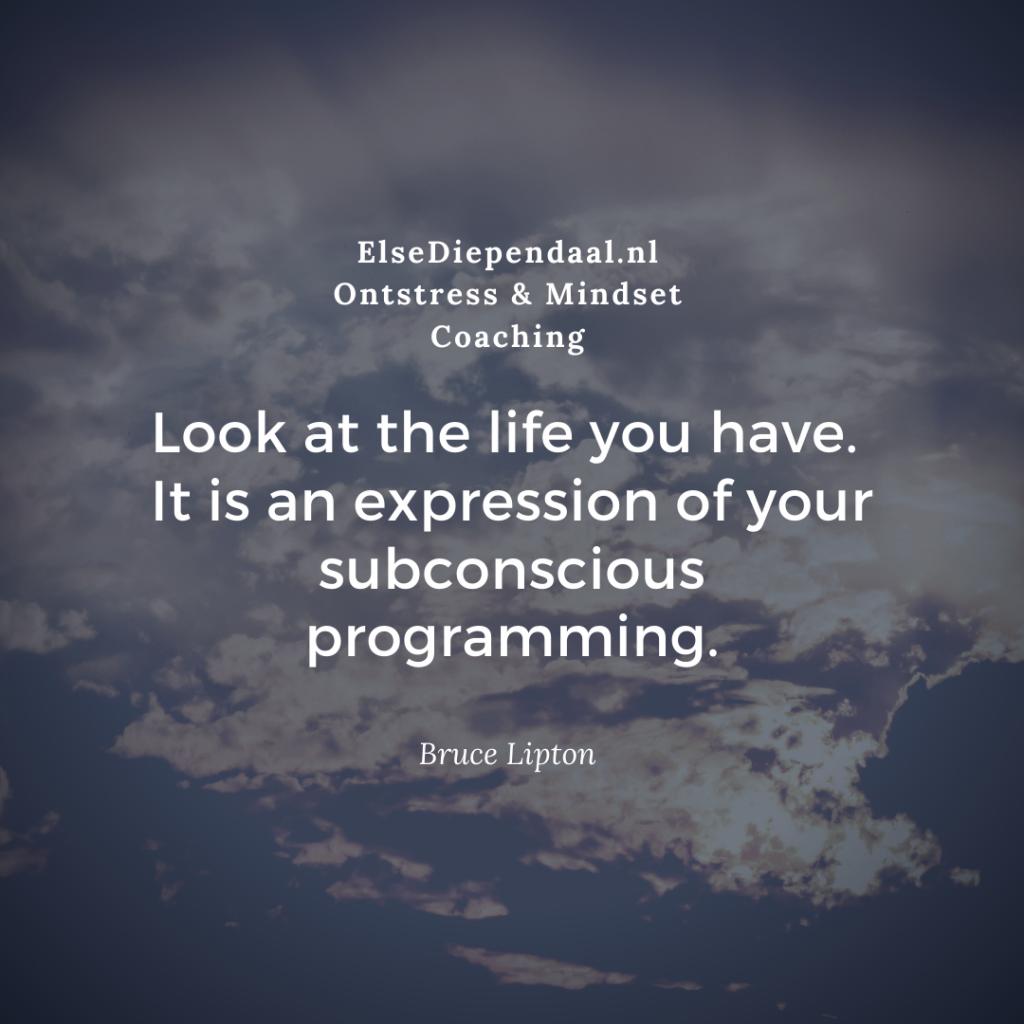 Nieuw gratis Ebook: Programmeer Jezelf en Creëer het leven dat je wilt